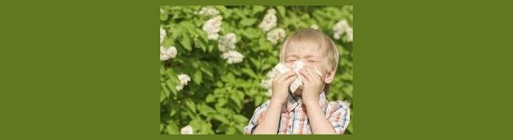 Con la primera, llegan las alergiasTambién para los niños