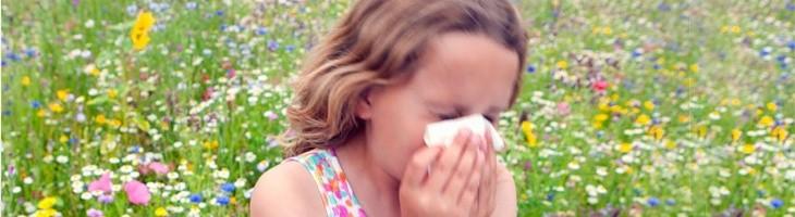¡Cuidado con las alergias y el polen!