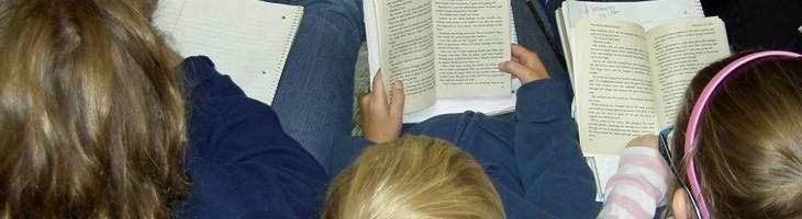 AVADIS contra la dislexia