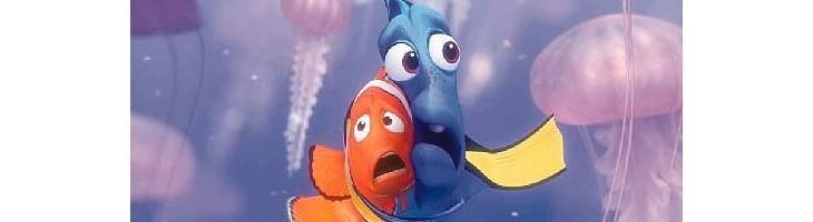 ¿Y si nos pica una medusa?