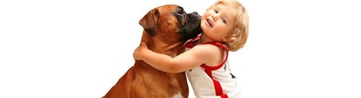 15 consejos para enseñar a tu perro a convivir con tu bebé