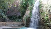 Font-de-la-Favara-en-La-Nucia