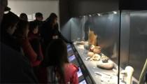 Museo-Macroesquematico