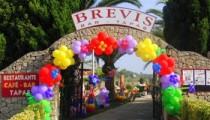 Brevis-Minigolf