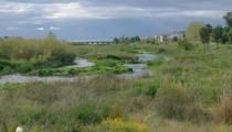 Ruta-del-Rio-Algar