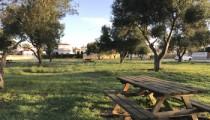 Parque-merendero-Ferreret