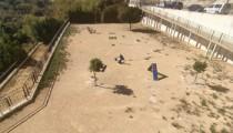 Parque-canino-Benissa-·-Zona-Verde-Beniver-(C/-Cami-vell-Beniver)