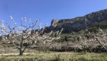 Ruta-por-la-Serra-de-la-Foradada
