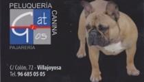 Peluqueria-Canina-Gat-i-Gos